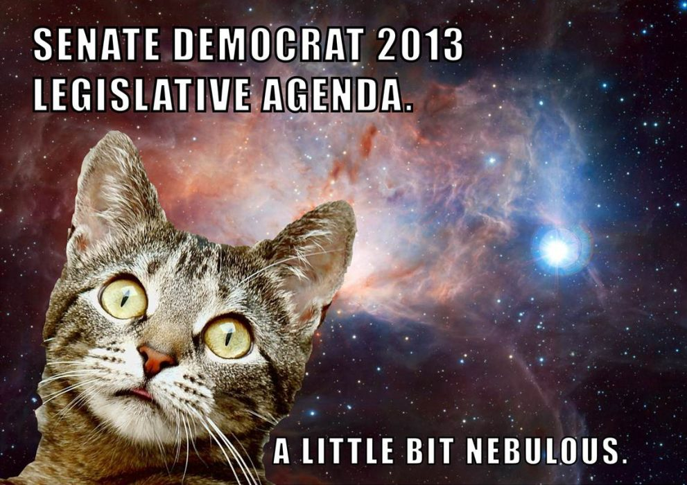 Senate Democrat agenda light on specifics